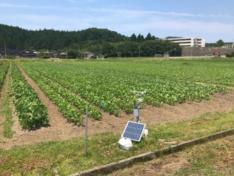 日本科学協会のブログに研究内容が紹介されました(電子情報科)